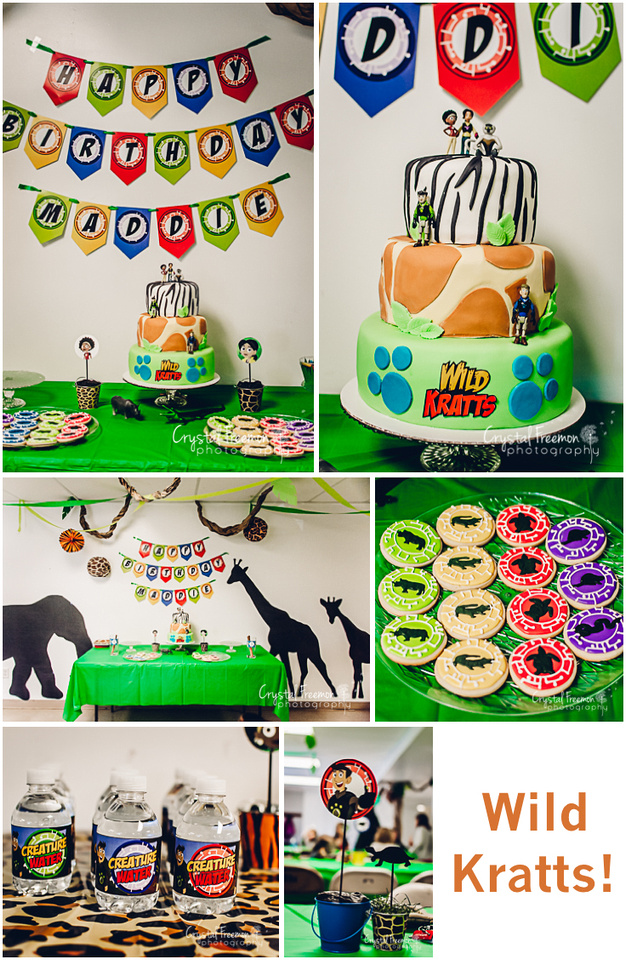 Crystal Freemon Photography Wild Kratts 7th Birthday Party