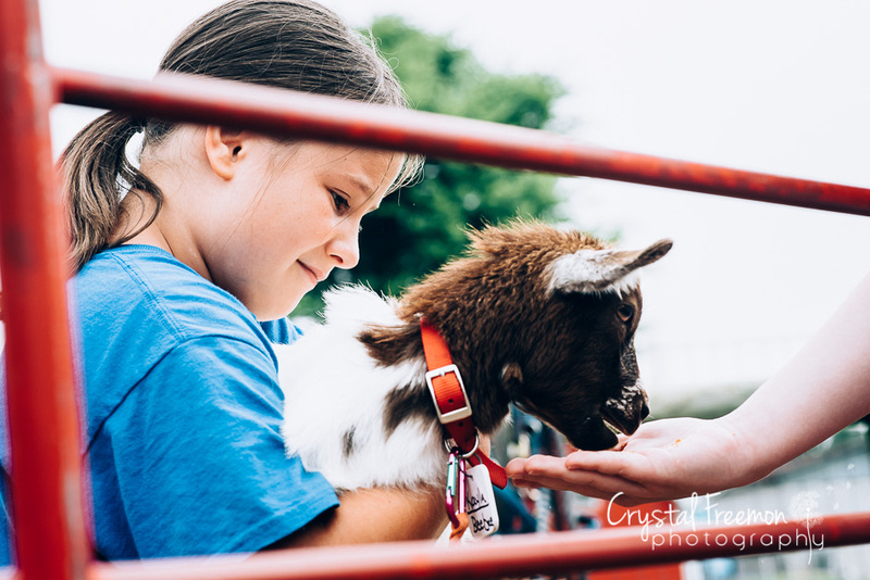 Summer Camp at Lucky Ladd Farms with Crystal Freemon Photography